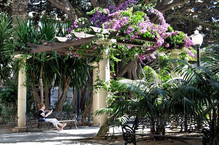 Plaza Gabriel Miró ¿Dónde encontrar un mejor lugar para la lectura? Reading