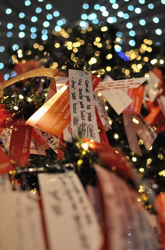El árbol de los deseos/The Wishing Tree